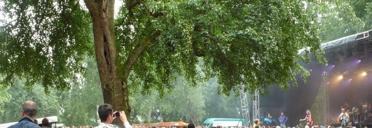 Fête du poiré - Mantilly. Crédit : Club photo Domfront